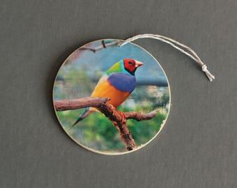 Gouldian Finch Photo Ornament