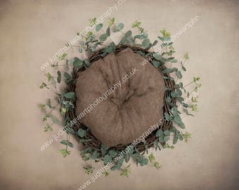 Digital Prop Newborn Photography EUCALYPTUS NEST Baby