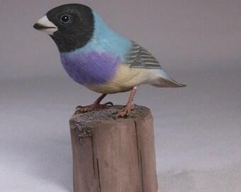 Gouldian Finch (teal-back) Hand Carved Wooden Bird