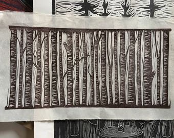 SALE: Birch Forest