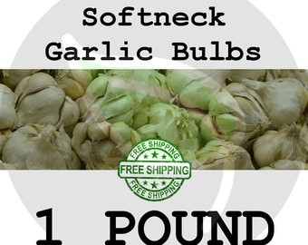 2018 SOFTNECK GARLIC - 1 Lb. - Bulbs, Cloves for Planting - White Gourmet Culinary Heirloom Seed, Non-GMO, Soft Neck - Free Shipping!