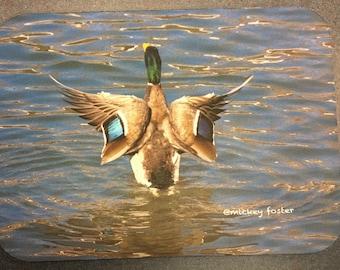 Alaska Mallard Duck - Mousepad