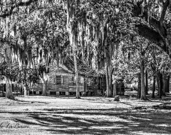 ACADIAN CABIN in Black and White ~ Cajun Decor ~ Creole Cottage ~ Plantation homes ~ Fine Art Photography ~ Louisiana Photography ~