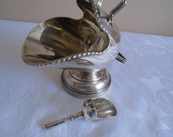 silver plated salt scuttle and scoop hand engraved