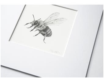 Bee mounted artist prints, square bee illustration, ink pointillism, stippling bumble art, bee drawing, bumble insect, save the bees bug
