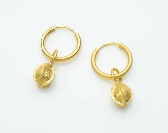 Gold earrings, gold hoop earrings, dangle earrings, seed pod earrings