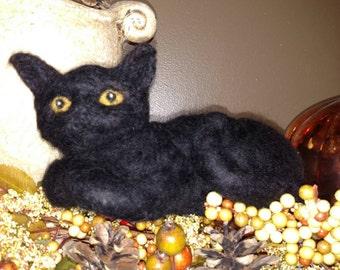 Wool Cat, Black Cat, Wool Animal