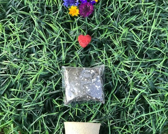 Seed Bomb Starter Kit. Decomposable. Pots. Wildflower. Seed Bombs.