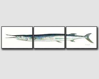IMPRESSION - huile d'aiguille - art mural décor imprimé aquarelle art mur poisson - décor de pêche - pêche sportive sel - Art Print par Juan Bosco