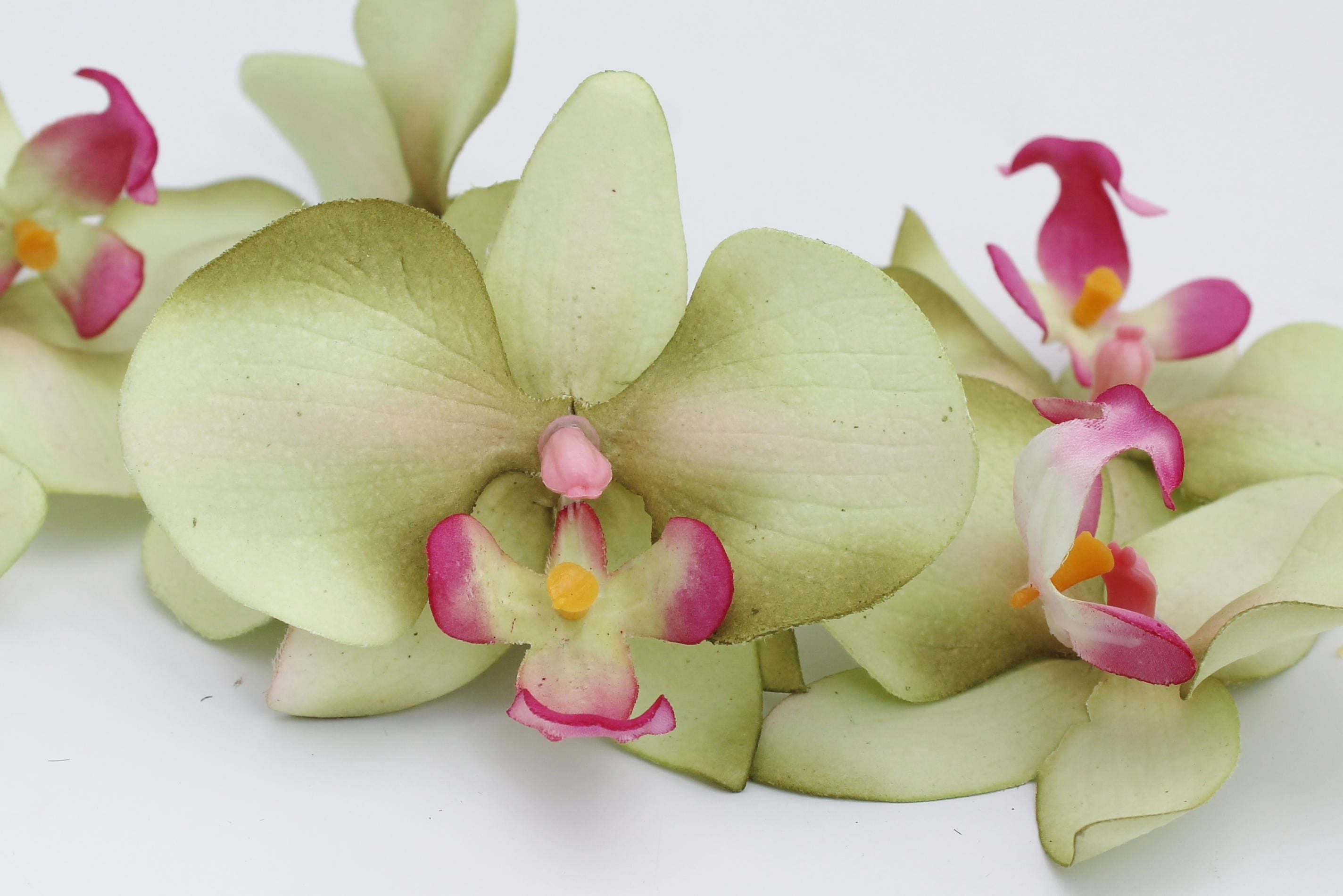 Green orchid phalaenopsis orchid flower crown hair accessory 699 izmirmasajfo Gallery