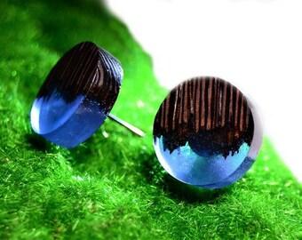 """Earrings """"Oasis"""". Unique gift wooden resin earrings epoxy jewelry"""