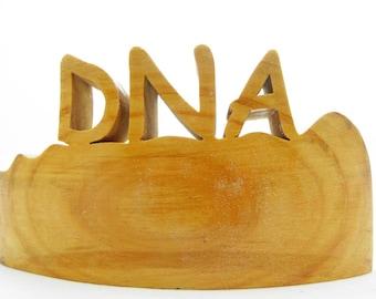 DNA, Geneticist Gift, Biologist Gift, Science Teacher Gift, Biology Teacher Gift, Genetics, Physician Gift, MD Gift, Chromosomes, Wood DNA