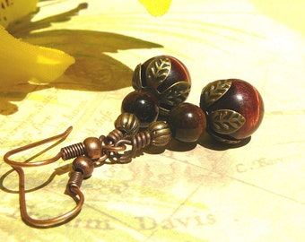 Red And Brown Tiger Eye Earrings