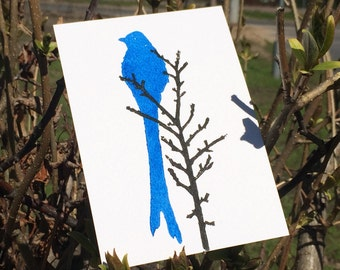 Card Blue bird ~ Postcard Birds ~ Postcards ~ Nature ~ Animal ~ Linoprint ~ Hand printed card ~ Linoprint card ~ Greeting card ~