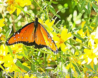 Monarch Butterfly Texas Art Limited Edition Giclee Print