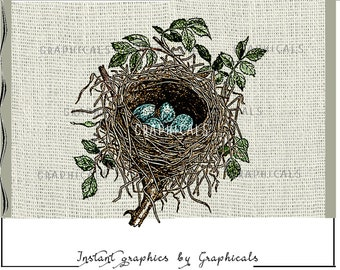 Spring bird's nest Blue eggs Instant Digital download image for iron on transfer burlap decoupage pillows scrapbooks totes No. 1836
