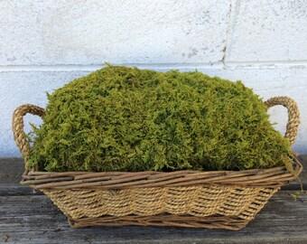 Moss, Sheet Moss, Feather Moss, Terrariums, Fairy Gardens, Kokedama, Floral Design, Woodland Wedding, Table Runner, Nursery Decor, Crafts