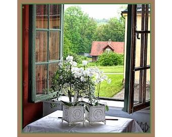 Window Art Print, Open Window, Window View, Summer, Window Photography, Wall Art, Home Decor, White Flowers, View from Window