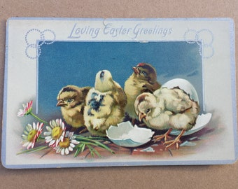 Antique Postcard 1910, Loving Easter Greetings, Easter Postcard, Chicks, Hatching Chick, Embossed, Silver Gilt, US Postage Stamp One Cent