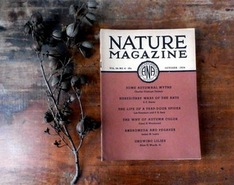 Vintage 1930s Nature Magazines, 1934-1935, 8 Issues
