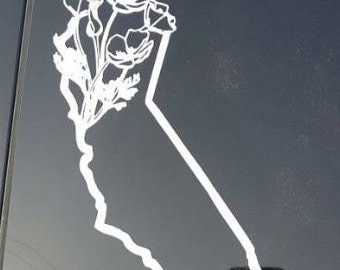 California Poppy (all weather) decal