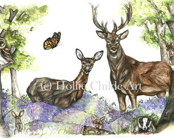 Deer scene 'woodland dream' Limited edition print