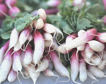 Large vegetable print kitchen wall art, french radish print, dining room decor shabby chic rustic farmers market food picture, pink white