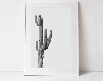 Cactus PRINTABLE Art, Cactus Print, Modern Wall Art Print, Black and White Photography, Living Room Art, Modern Decor DOWNLOADABLE PRINT Art