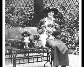 Vintage Historic Reproduction Photo French Woman With Puppies Unframed