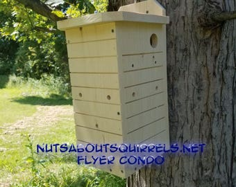 Southern Flying Squirrel Condo