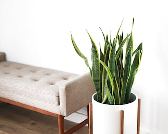 """Large Mid century Modern Planter and Solid Wood Planter Stand - 12"""" Ceramic Pot"""