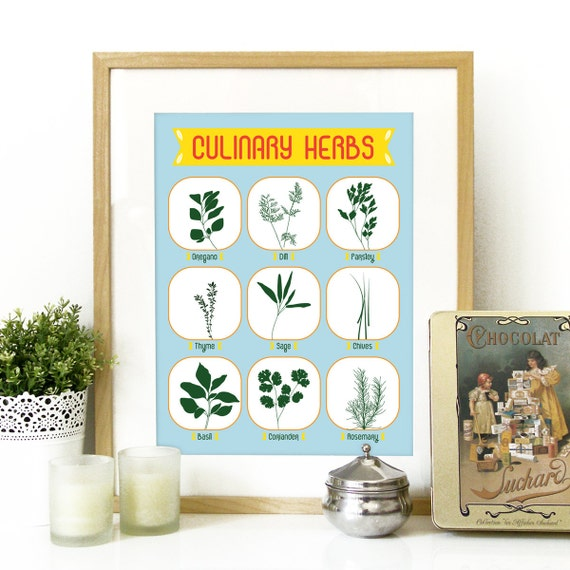Culinary Herbs Kitchen Poster Art Print Culinary Herbs
