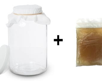 Kombucha Scoby with Starter Tea and 1 Gallon Glass Kombucha Jar - Brewing and Fermenting Kit  By Kitchentoolz