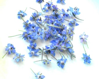 100 + Organic Real EDIBLE BORAGE BLOSSOMS, Dark Blue, Edible Flowers, Bulk, Wedding Cakes, Cup Cake Toppings
