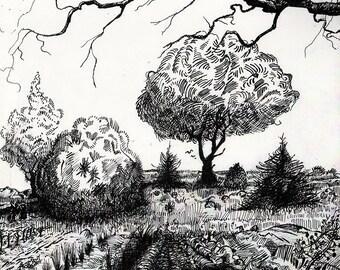 """Fractured Landscape - B&W - 11""""x14"""""""