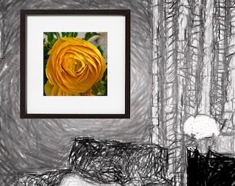 Yellow Rose Digital Download