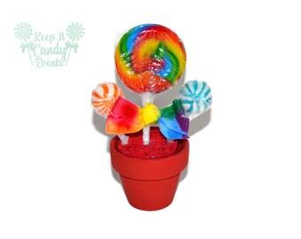 Mini Rainbow candy arrangement, lollipop favor, rainbow favor, rainbow wedding favor, edible rainbow candy favor, party favor, rainbow theme