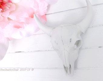 White Longhorn Skull~Cow Skull~Bull Skull~Texas Longhorn,Longhorn Wall Hanging