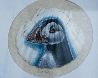Hand Painted Puffin on Shell, Framed