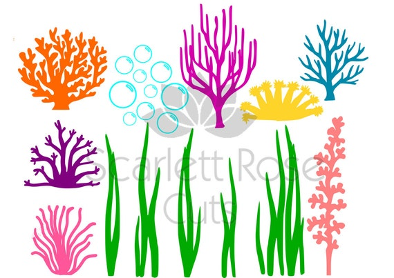 Under The Sea Seaweed Coral Bubbles Svg Ocean Life For