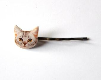 Barrette pour filles amoureuses de chats; cabochon resine photo Tete de Chat gris ( chat tigré, Américain à poil court )