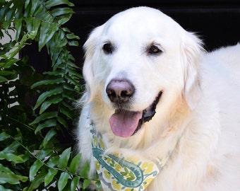 Dog Scarf, Dog Bandana, Personalized Dog Bandana with Paisley, Size Extra Extra Small to Extra Large, Reversible, Pet Accessories