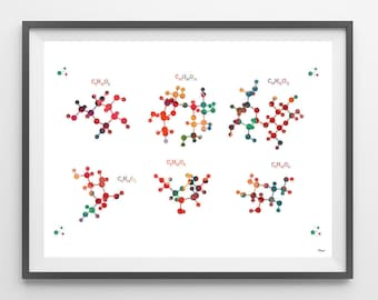 Carbohydrates watercolor print carbohydrates chemical formula poster molecular structure of general carbohydrates biology art wall decor [2]