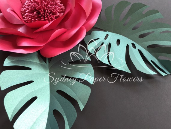 Monstera leaf template for paper flowers and video tutorial pdf svg monstera leaf template for paper flowers and video tutorial pdf svg cricut silhouette cameo paper leaf patternpaper leaf template from sydneypaperflowers mightylinksfo