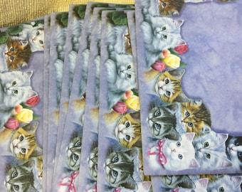 Cutest Kittens Set 12 Notecards Tin Set 12 notecards 4 X 6  3 of each