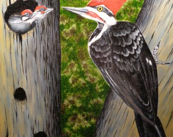 Pileated Woodpecker and Young