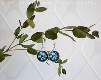 Forget me not - Earrings - Blue flowers