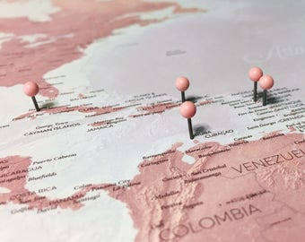 Blush Push Pin World Map - DIY Poster - Pin your travels on this beautiful, detailed world map