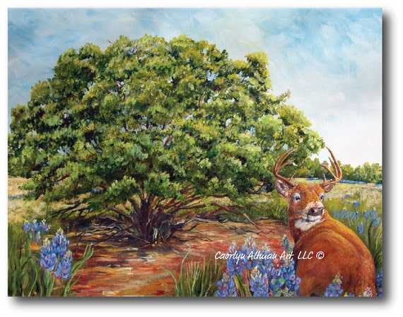 Bluebonnets in the Texas Hill Country with the Deer Painting | Original Pretty Texas Blue Bonnets and Deer Painting | Art Prints, Originals