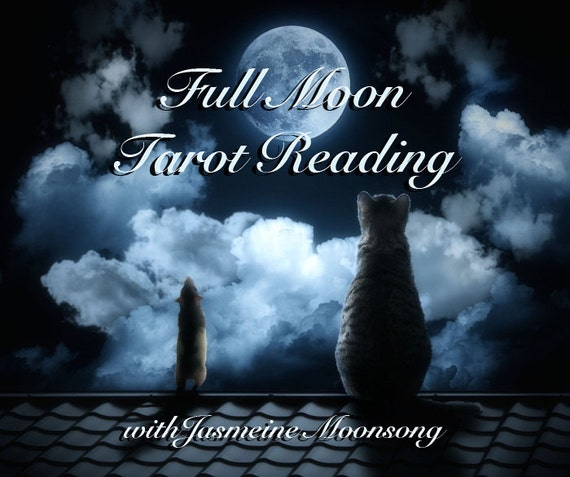 Full Moon Tarot Reading With Power Animal Oracle